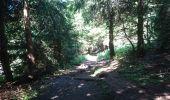Randonnée Marche BOREE - Tence-170619 - MontMézinc - Photo 1