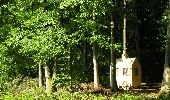 Randonnée Marche Gesves - Sentiers d'Art 2019 / Gesves-Ohey - Photo 34
