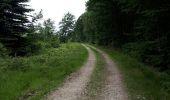 Trail Walk Spa - Spa Sol cres - Photo 32