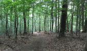 Trail Walk Spa - Spa Sol cres - Photo 26