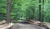 Trail Walk Spa - Spa Sol cres - Photo 23