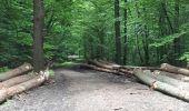 Trail Walk Spa - Spa Sol cres - Photo 22