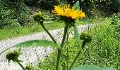 Trail Walk Spa - Spa Sol cres - Photo 10