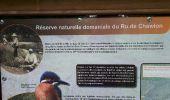 Trail Walk Spa - Spa Sol cres - Photo 13