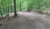 Trail Walk Spa - Spa Sol cres - Photo 5