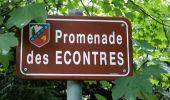 Randonnée Marche CHAMONIX-MONT-BLANC - CHAMONIX (Balade de l'Arve) - Photo 4