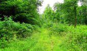 Randonnée Marche LA FERTE-MILON - en forêt de Retz_55_le bois de Borny - Photo 46
