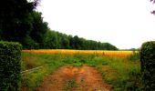 Randonnée Marche LA FERTE-MILON - en forêt de Retz_55_le bois de Borny - Photo 32
