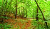 Randonnée Marche LA FERTE-MILON - en forêt de Retz_55_le bois de Borny - Photo 13