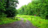 Randonnée Marche LA FERTE-MILON - en forêt de Retz_55_le bois de Borny - Photo 34