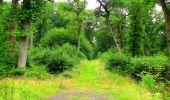 Randonnée Marche LA FERTE-MILON - en forêt de Retz_55_le bois de Borny - Photo 43