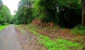 Randonnée Marche LA FERTE-MILON - en forêt de Retz_55_le bois de Borny - Photo 24