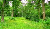 Randonnée Marche LA FERTE-MILON - en forêt de Retz_55_le bois de Borny - Photo 47