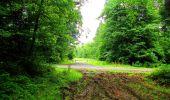 Randonnée Marche LA FERTE-MILON - en forêt de Retz_55_le bois de Borny - Photo 26