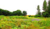 Randonnée Marche LA FERTE-MILON - en forêt de Retz_55_le bois de Borny - Photo 53