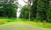 Randonnée Marche LA FERTE-MILON - en forêt de Retz_55_le bois de Borny - Photo 44