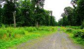 Randonnée Marche LA FERTE-MILON - en forêt de Retz_55_le bois de Borny - Photo 42