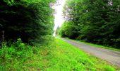 Randonnée Marche LA FERTE-MILON - en forêt de Retz_55_le bois de Borny - Photo 25