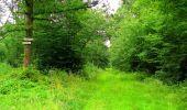 Randonnée Marche LA FERTE-MILON - en forêt de Retz_55_le bois de Borny - Photo 39