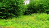 Randonnée Marche LA FERTE-MILON - en forêt de Retz_55_le bois de Borny - Photo 37