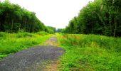 Randonnée Marche LA FERTE-MILON - en forêt de Retz_55_le bois de Borny - Photo 38
