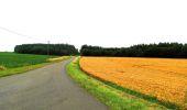 Randonnée Marche LA FERTE-MILON - en forêt de Retz_55_le bois de Borny - Photo 54