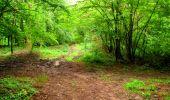 Randonnée Marche LA FERTE-MILON - en forêt de Retz_55_le bois de Borny - Photo 17