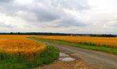 Randonnée Marche LA FERTE-MILON - en forêt de Retz_55_le bois de Borny - Photo 60