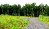 Randonnée Marche LA FERTE-MILON - en forêt de Retz_55_le bois de Borny - Photo 52