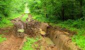 Randonnée Marche LA FERTE-MILON - en forêt de Retz_55_le bois de Borny - Photo 19