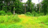 Randonnée Marche LA FERTE-MILON - en forêt de Retz_55_le bois de Borny - Photo 41