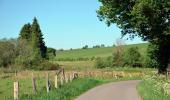 Trail Motor Sainte-Ode - Circuit gourmand - La Route des Saveurs au Pays de Bastogne - Photo 5