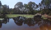 Randonnée V.T.T. SAINT-RAPHAEL - VTT de la forêt de l'estérel  - Photo 3