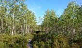 Trail Walk NEMOURS - pso-170726 - Nemours-Poligny - Photo 17