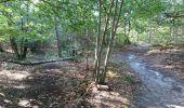 Trail Walk NEMOURS - pso-170726 - Nemours-Poligny - Photo 20