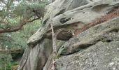 Trail Walk NEMOURS - pso-170726 - Nemours-Poligny - Photo 4