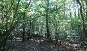 Trail Walk NEMOURS - pso-170726 - Nemours-Poligny - Photo 15