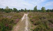 Trail Walk NEMOURS - pso-170726 - Nemours-Poligny - Photo 22