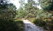 Randonnée Marche NEMOURS - pso-170726 - Nemours-Poligny - Photo 23