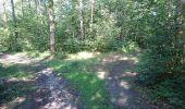 Trail Walk NEMOURS - pso-170726 - Nemours-Poligny - Photo 16