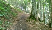 Trail Walk MEGEVETTE - La Pointe des Jottis - Photo 4