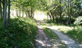 Trail Walk MEGEVETTE - La Pointe des Jottis - Photo 3