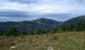 Trail Walk MEGEVETTE - La Pointe des Jottis - Photo 2