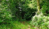 Trail Walk LONGPONT - en forêt de Retz_56_Longpont_tour du Général Mangin_AR - Photo 75