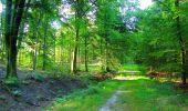 Trail Walk LONGPONT - en forêt de Retz_56_Longpont_tour du Général Mangin_AR - Photo 172