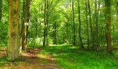Trail Walk LONGPONT - en forêt de Retz_56_Longpont_tour du Général Mangin_AR - Photo 45