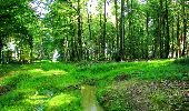 Trail Walk LONGPONT - en forêt de Retz_56_Longpont_tour du Général Mangin_AR - Photo 133