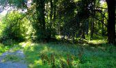 Trail Walk LONGPONT - en forêt de Retz_56_Longpont_tour du Général Mangin_AR - Photo 136