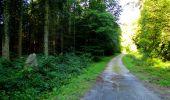 Trail Walk LONGPONT - en forêt de Retz_56_Longpont_tour du Général Mangin_AR - Photo 178