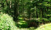 Trail Walk LONGPONT - en forêt de Retz_56_Longpont_tour du Général Mangin_AR - Photo 58